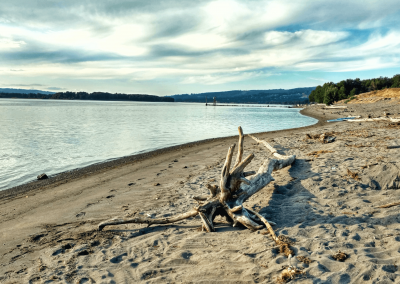 Columbia_River_sandy_beach